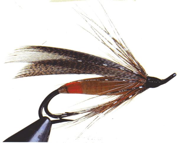 barbolle-version-femelle-demmanuel-gladel