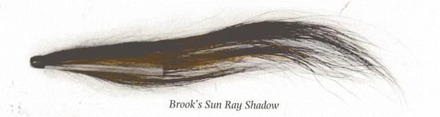 brooks-sun-ray-shadow