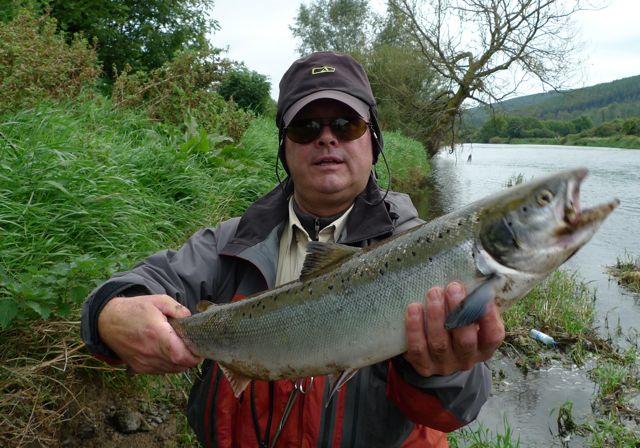 franois-saumon-frais-60cm-mouche