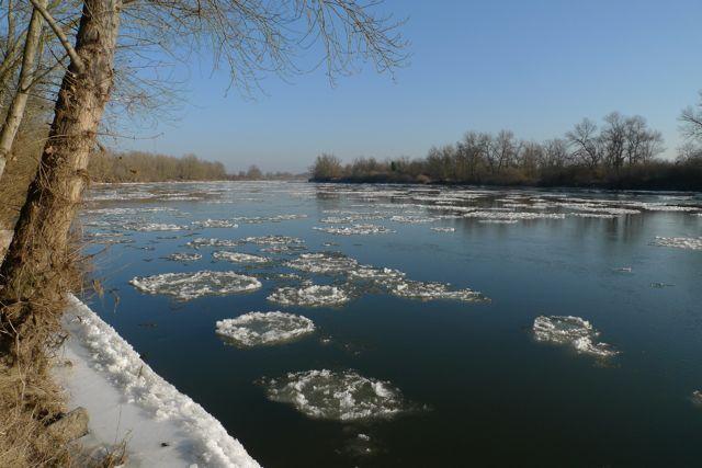 loire-sauvage-glaces-12janvier2012