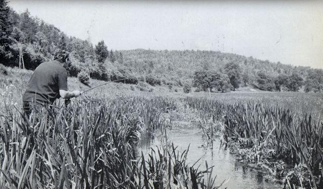 oliver-kite-bourgogne-ruisseau-abbaye-de-fontenay