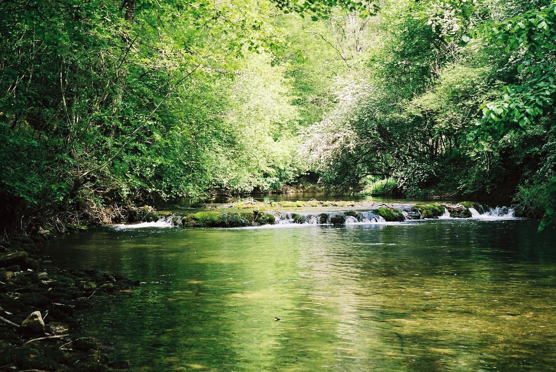 Rivières calcaire de Côte d'Or