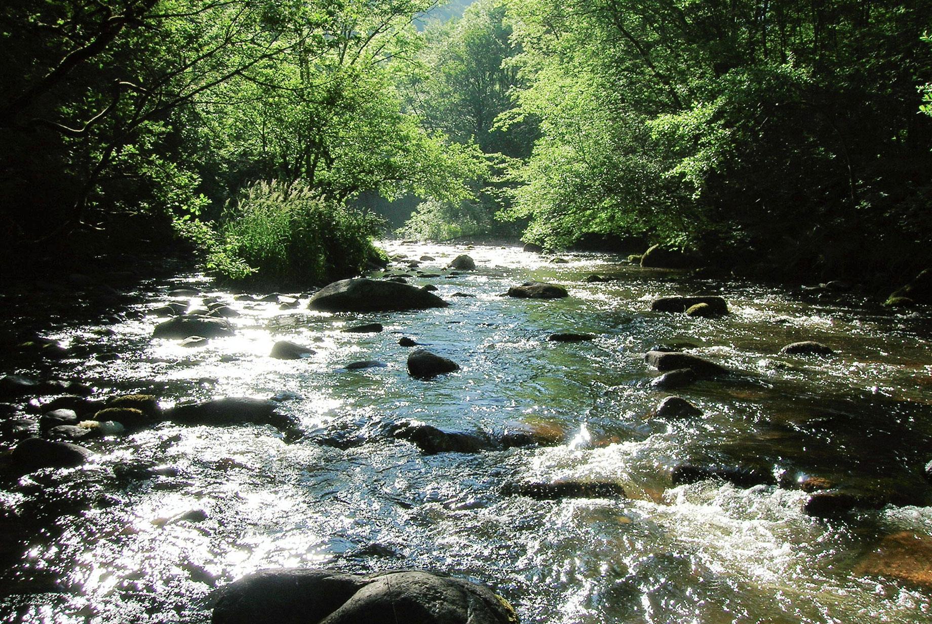 Rivières rapide du Morvan