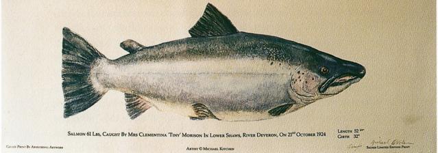 saumon-mrs-clementina-tiny-morison